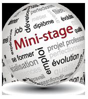 Logo Mini Stage - Orientation Lycée