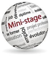 mini stage 2 - Accueil